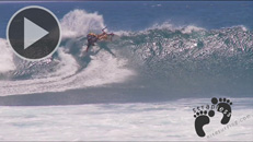 5 reasons surfer's sould get into