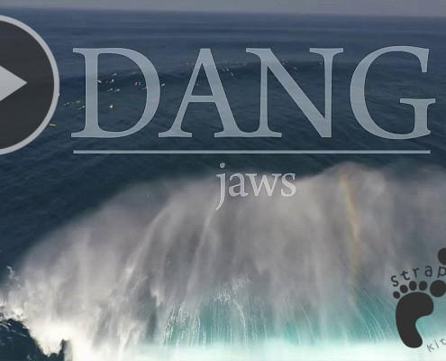 DANG jaws