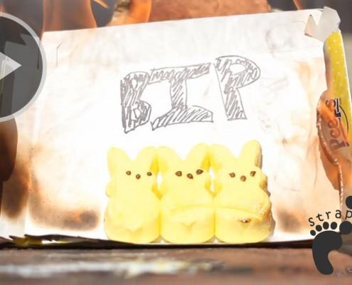 B(ROLL)IP